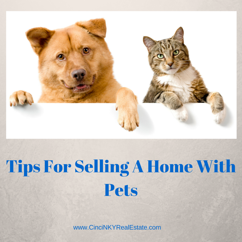 Tips for selling a home with pets graphic