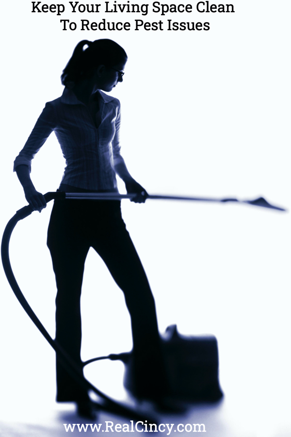 keep your living space clean to help avoid pests