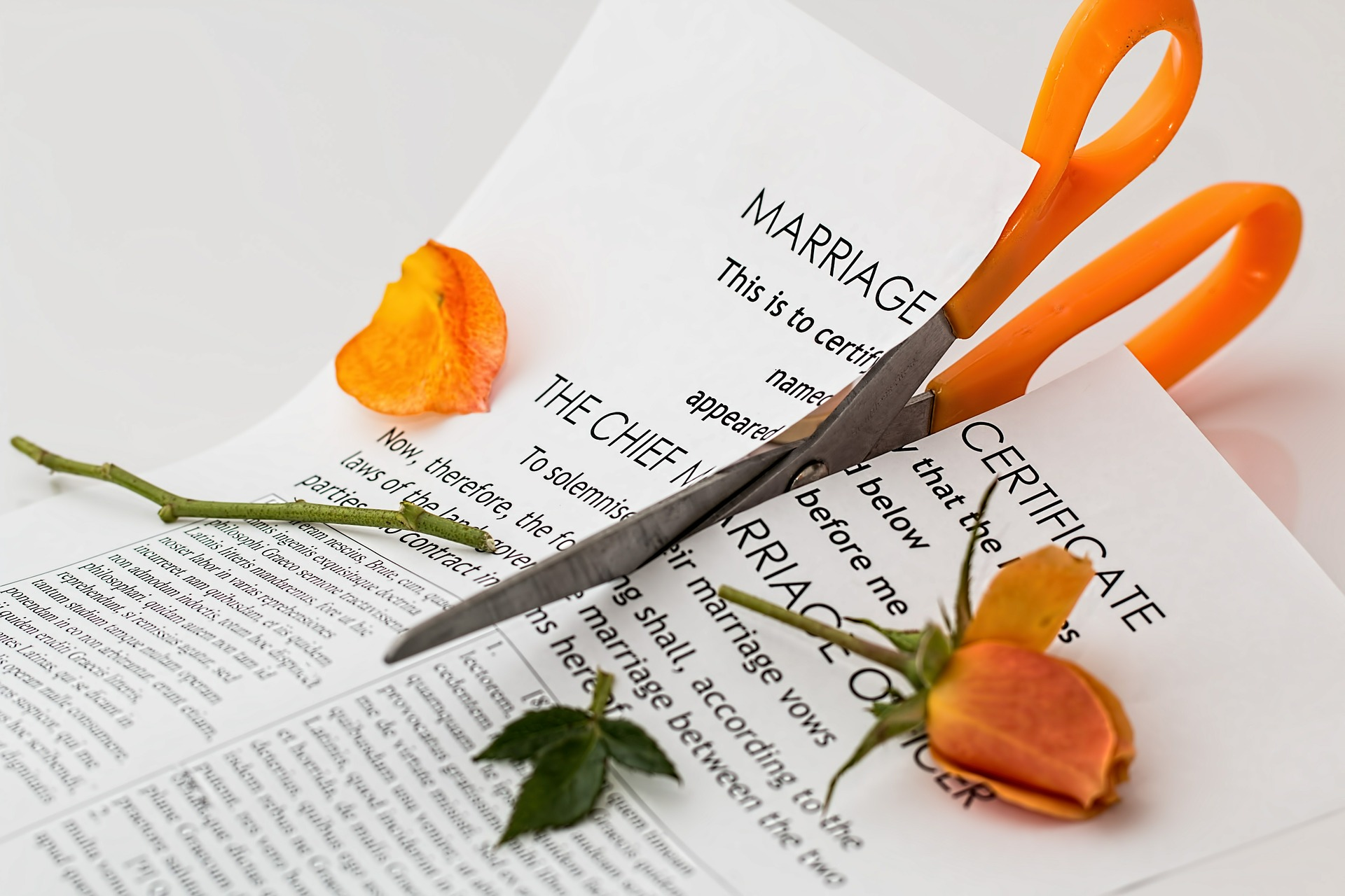 picture of cut up marriage certificate divorce