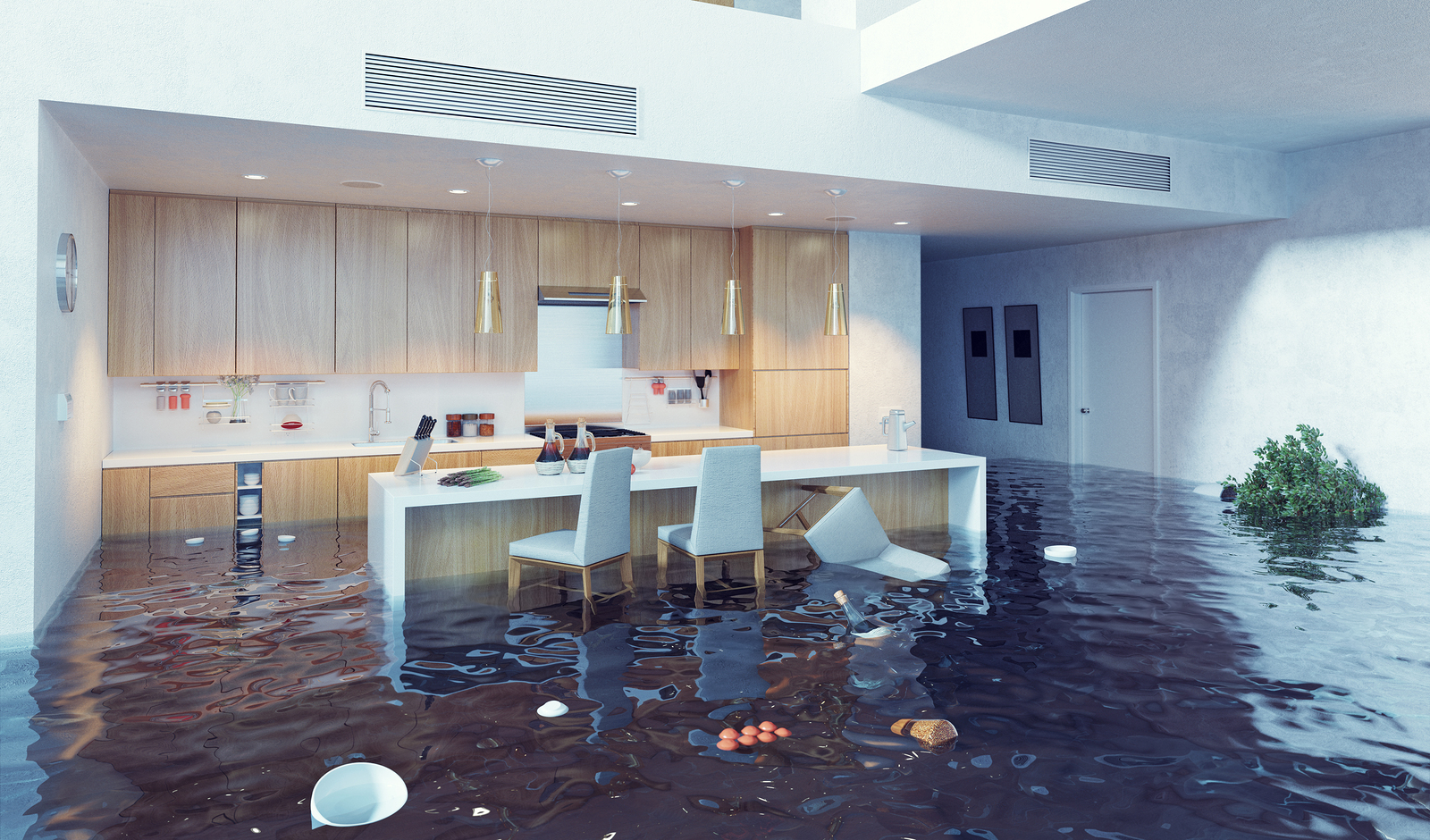 flooded luxury kitchen as a warning to work with experts for buying a home sight unseen
