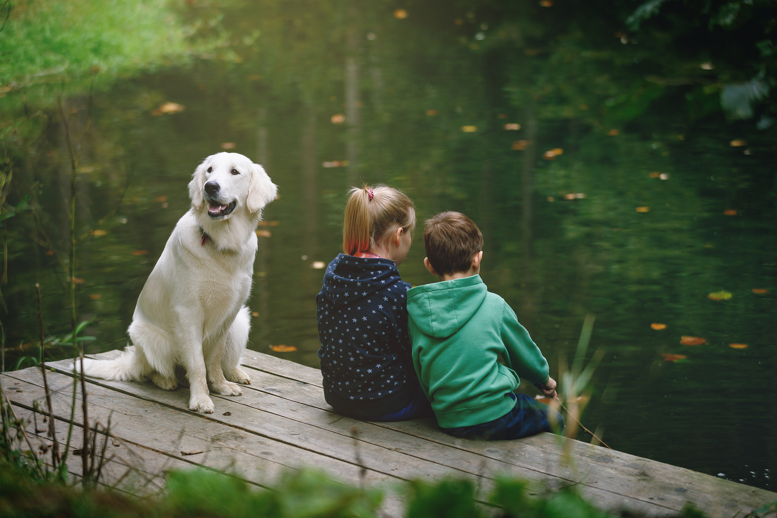 two kids and a dog by a body of water