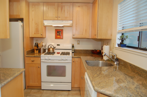 201_albion_ct._kitchen_500