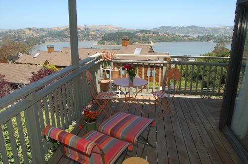 208_headlands_ct._sausalito_ca__hilary_davis_realtor_blog_500