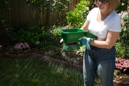how_to_fertilze_lawn_hilary_davis_realtor_448