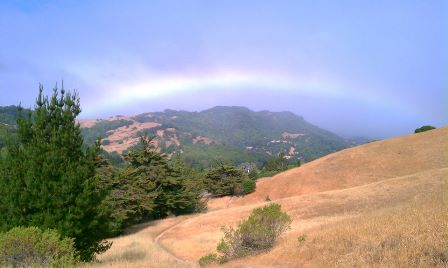 rainbow_in_idylberry_trail_hilary_davis_realtor_448