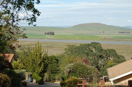views_16_guisela_ct._novato_hilary_davis_realtor_448
