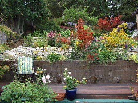 sharlene_good_garden_2_448