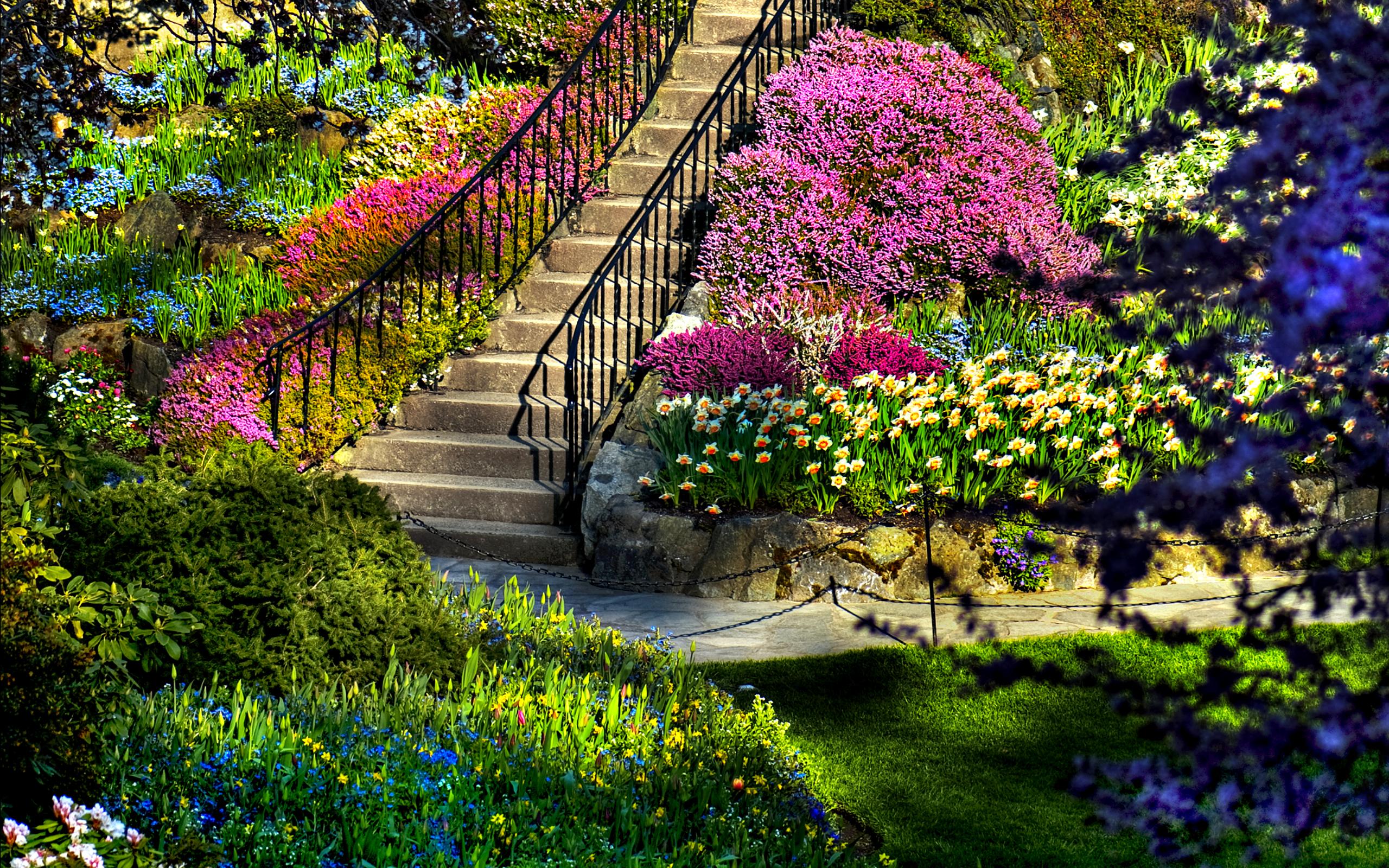garden_2560