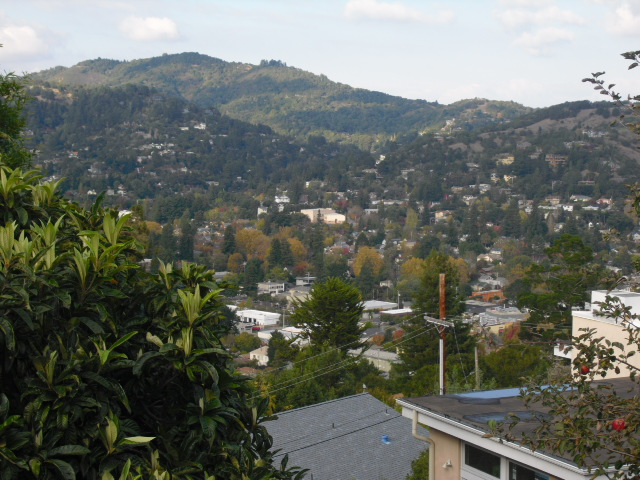 mill_valley_view_from_deck_640