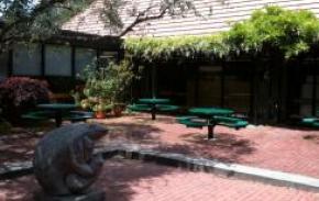 novato-library-courtyard2_290