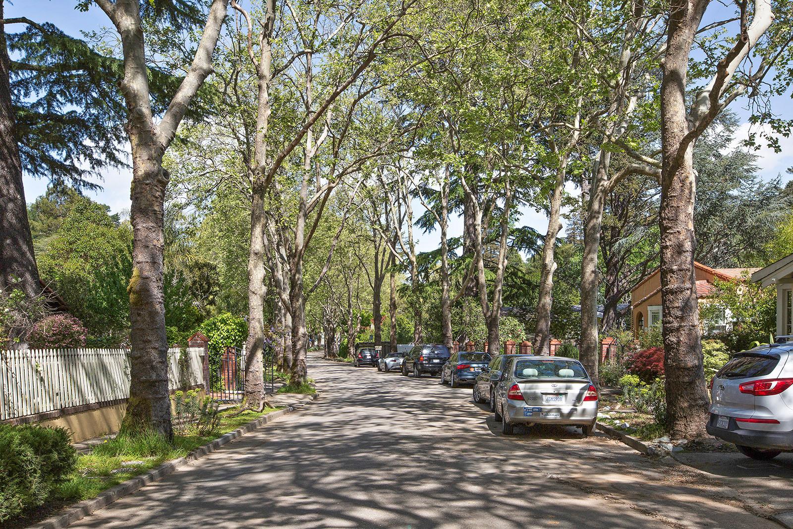 77 Cypress Tree Lines Street