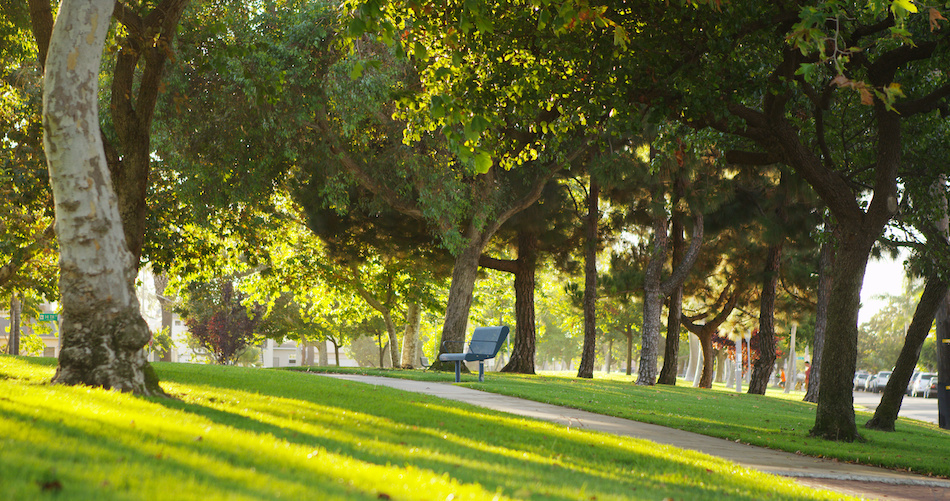 The Best Parks in Leander and Cedar Park