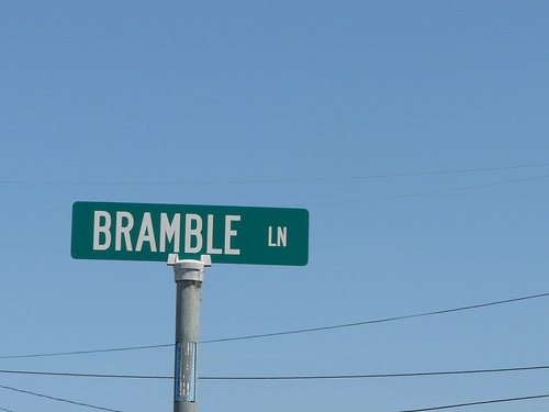 bramble lane condos street sign