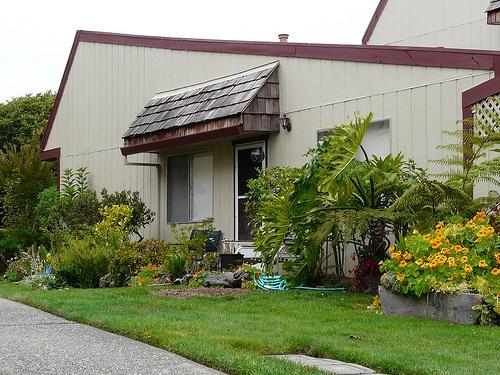 lawn at harbor_oaks homes