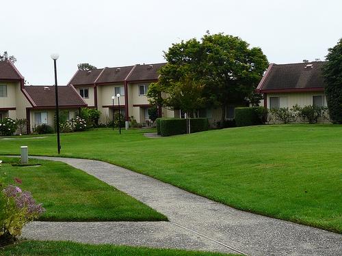 harbor_oaks-green frontyard