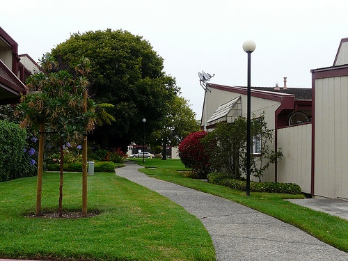harbor oaks home pathway