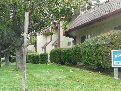 harbor_oaks homes for sale
