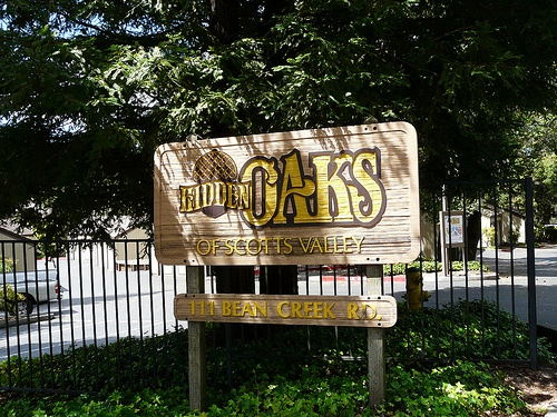 hidden oaks real estate