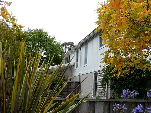 Marina Greens|Annie Lane - Property In Santa Cruz CA