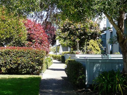 garden in sandpiper townhomes
