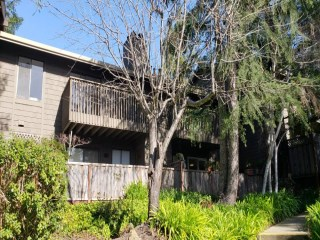 311_Scotts_Valley_CA_Village_Green_homes_for_sale