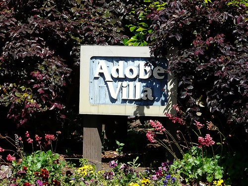 Adobe Villa Santa Cruz Townhomes