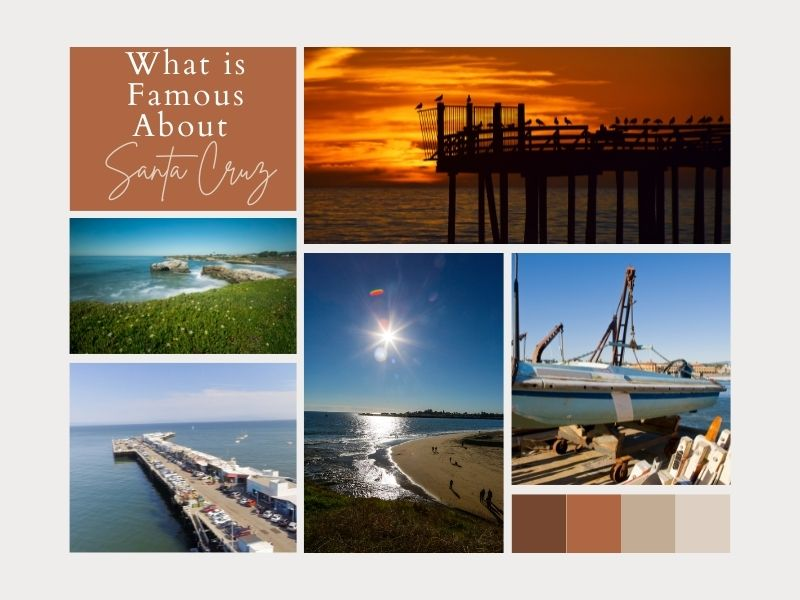 What is Famous About Santa Cruz?