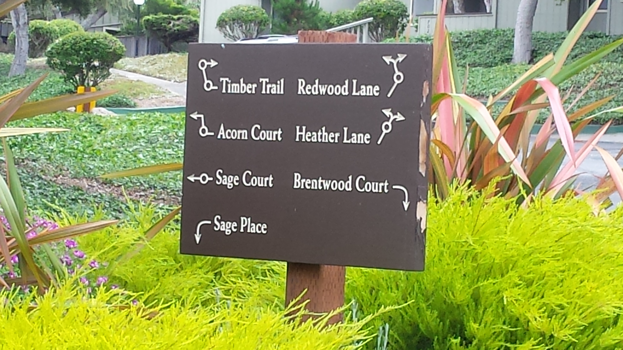 forest grove condo for sale