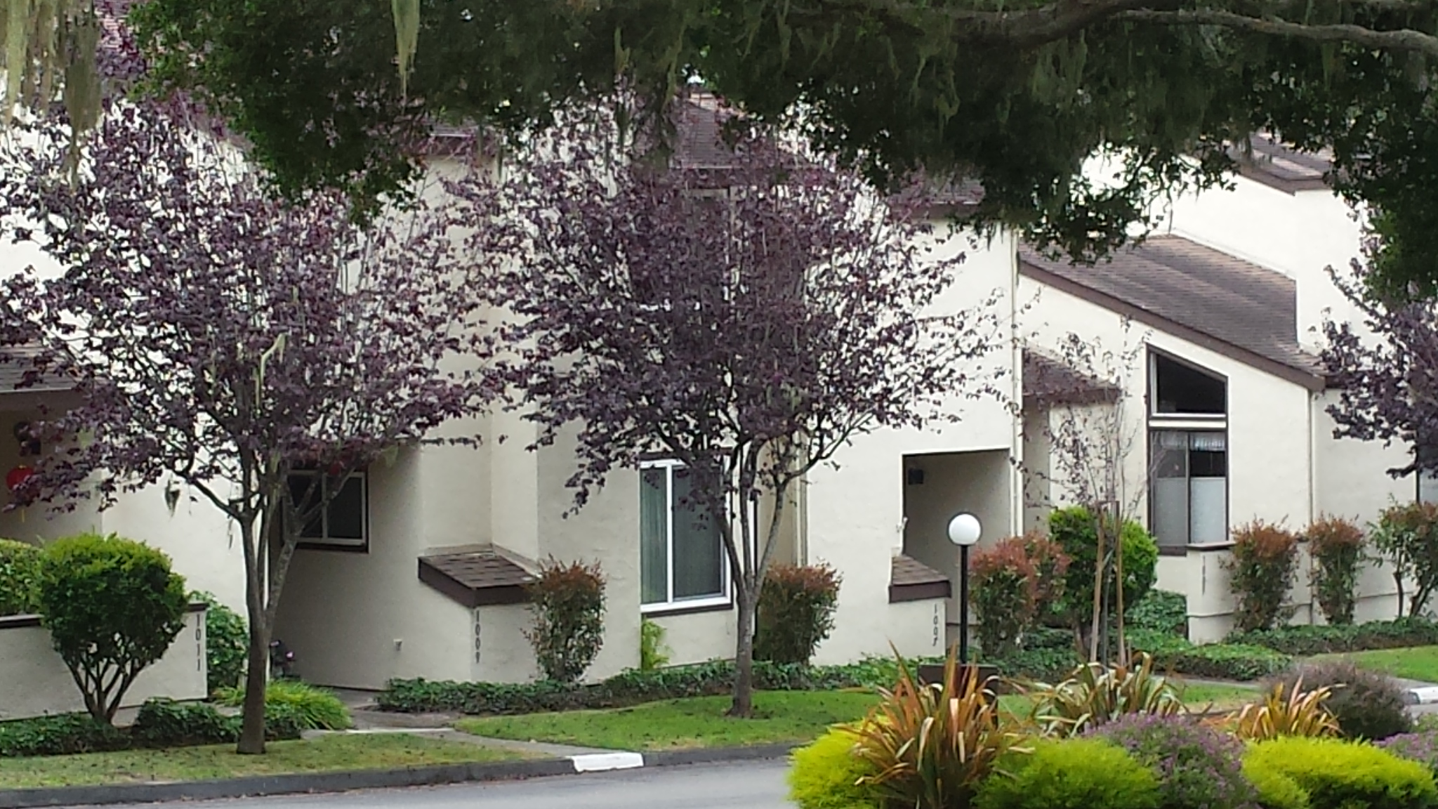 forest grove condo for sale in pacific grove