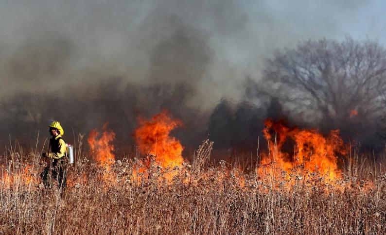 wild fire areas