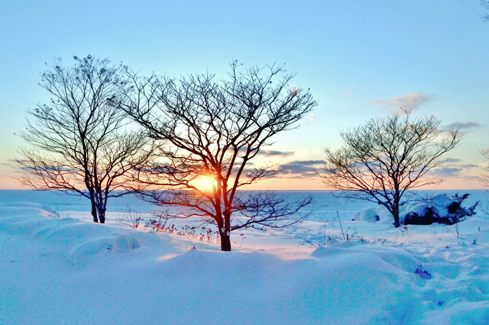 Good Things to Know About Surviving Winter Around Indy