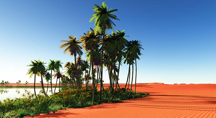 oasis scene