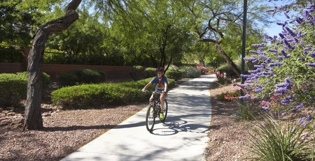 Summerlin Trails in New Development
