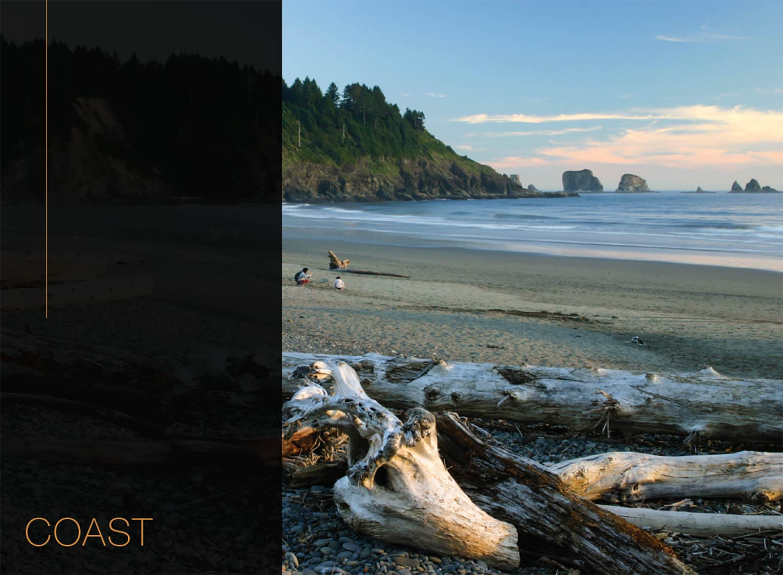 Washington Coast Waterfront Real Estate Markets