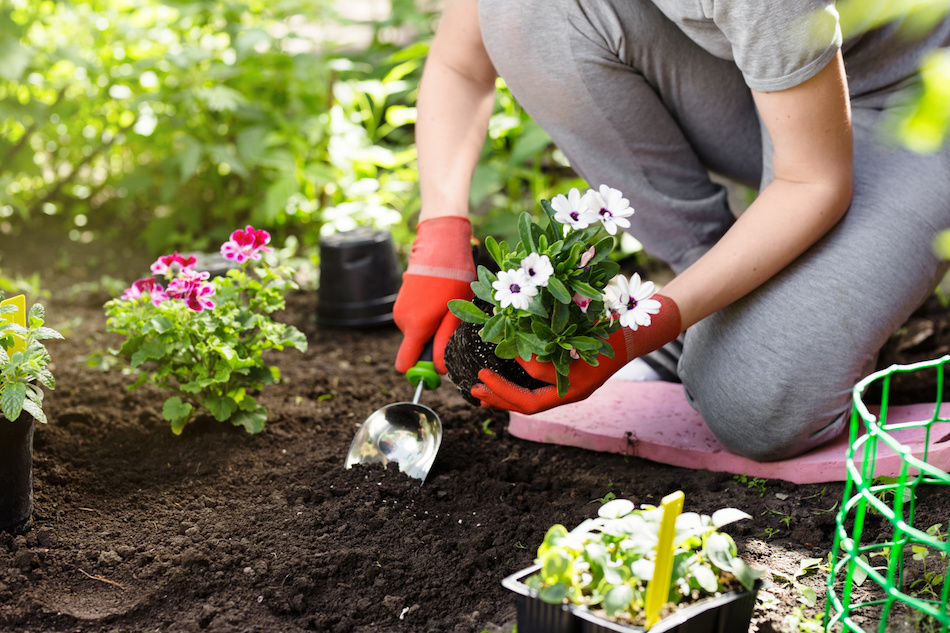 How to Landscape When Selling Your Home