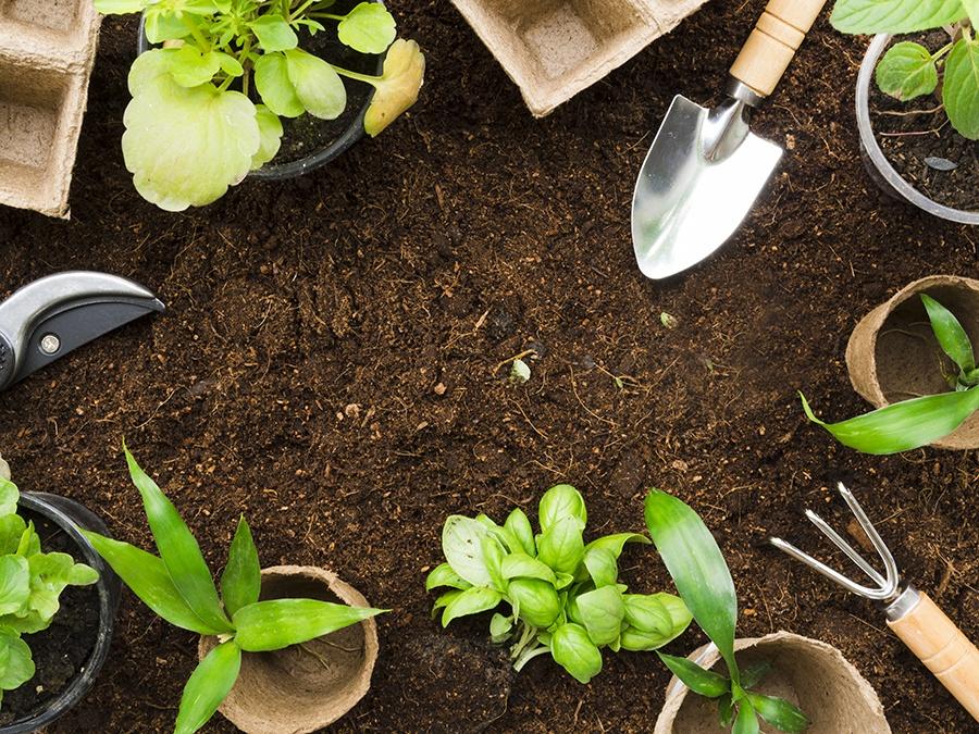 10 Simple Home Garden Hacks Everyone Should Know Tools Image