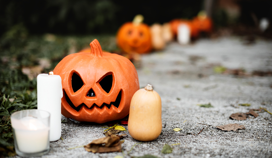 10 Spooky Things to Do In Edmonton This Halloween Jackolantern Image