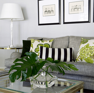 Best Home Decor Tips for People Who Can't Decor Plant with Sofa Image