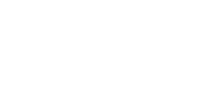 Vertical, clear logo for Arizona Network Realty