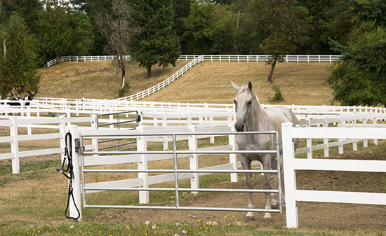 Hudson Valley NY Equestrian Properties For Sale