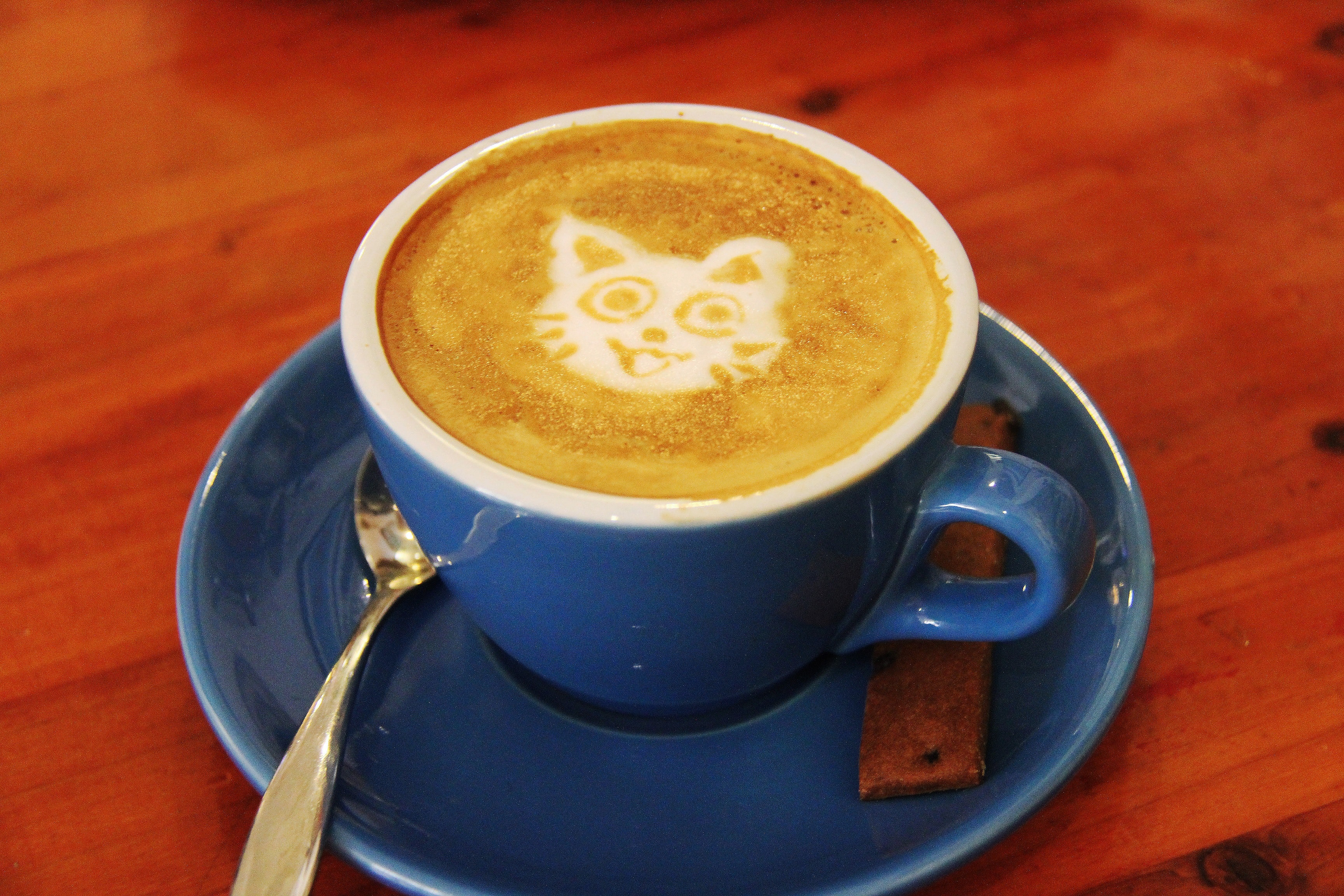 Does your purrfect day involve cats and coffee?