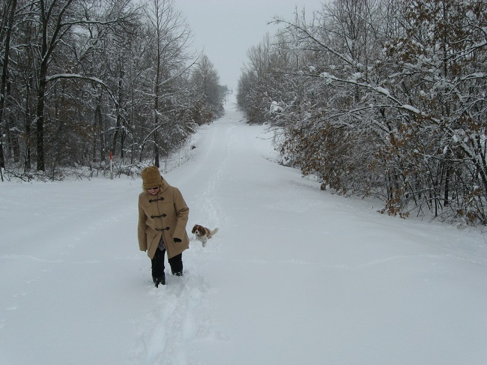 Dog and owner in deep snow