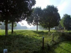 Carmel golf course