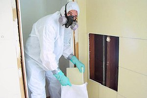 Eliminate mold from your home.
