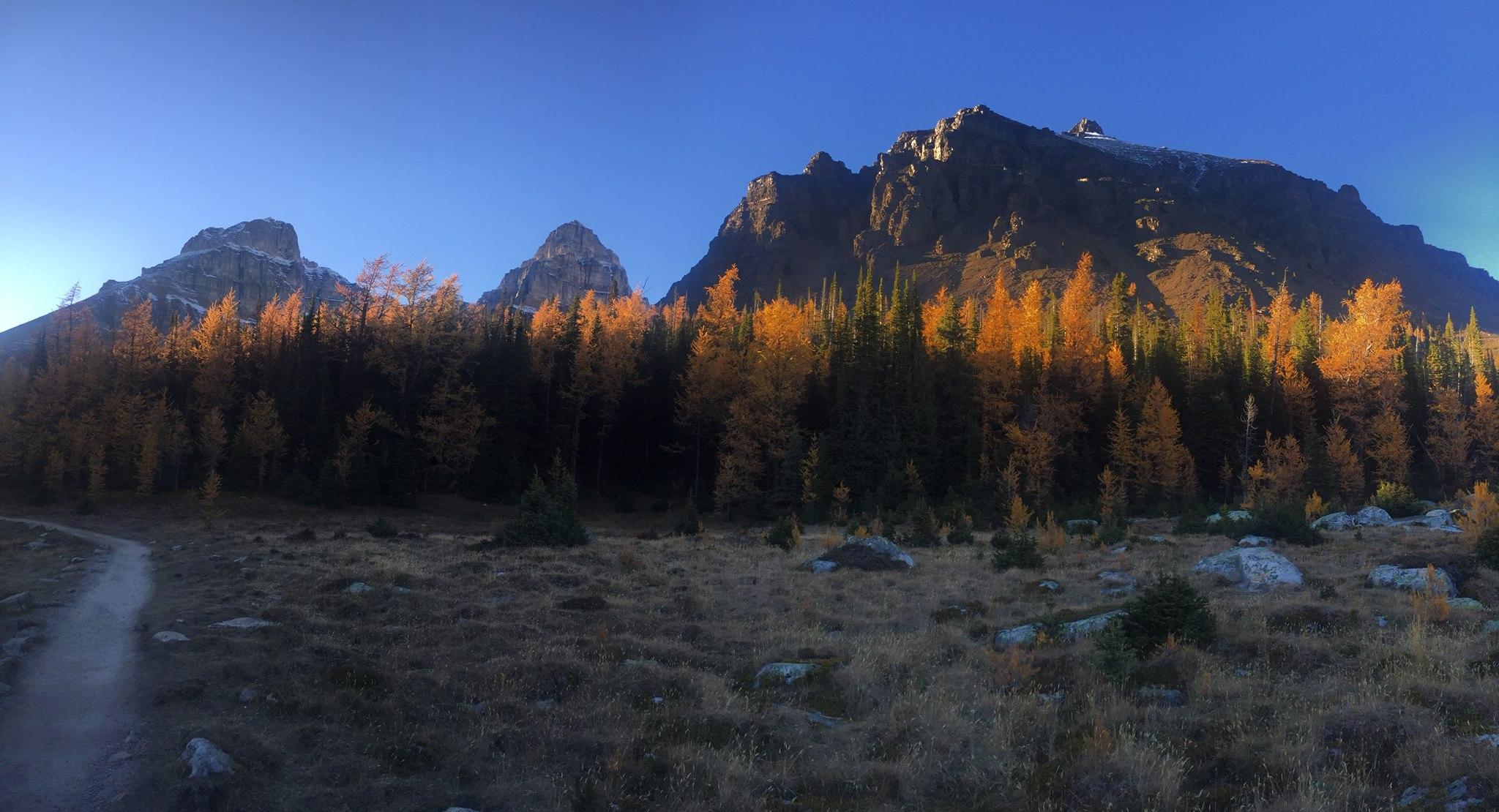 Mountain View in Canmore