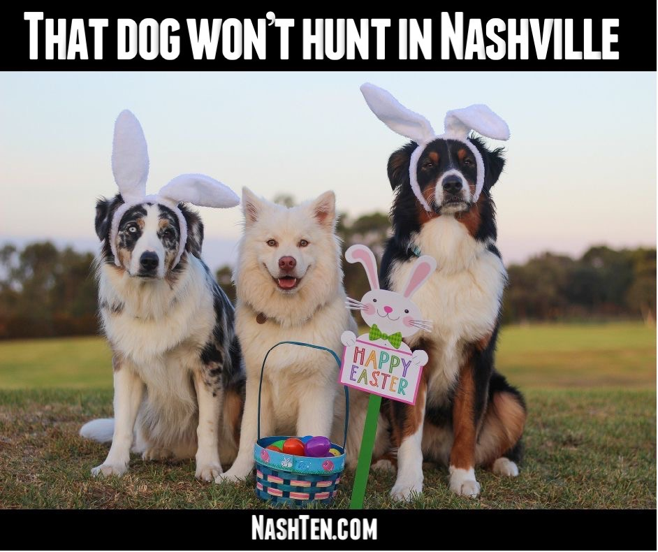 That Dog Won't Hunt in Nashville