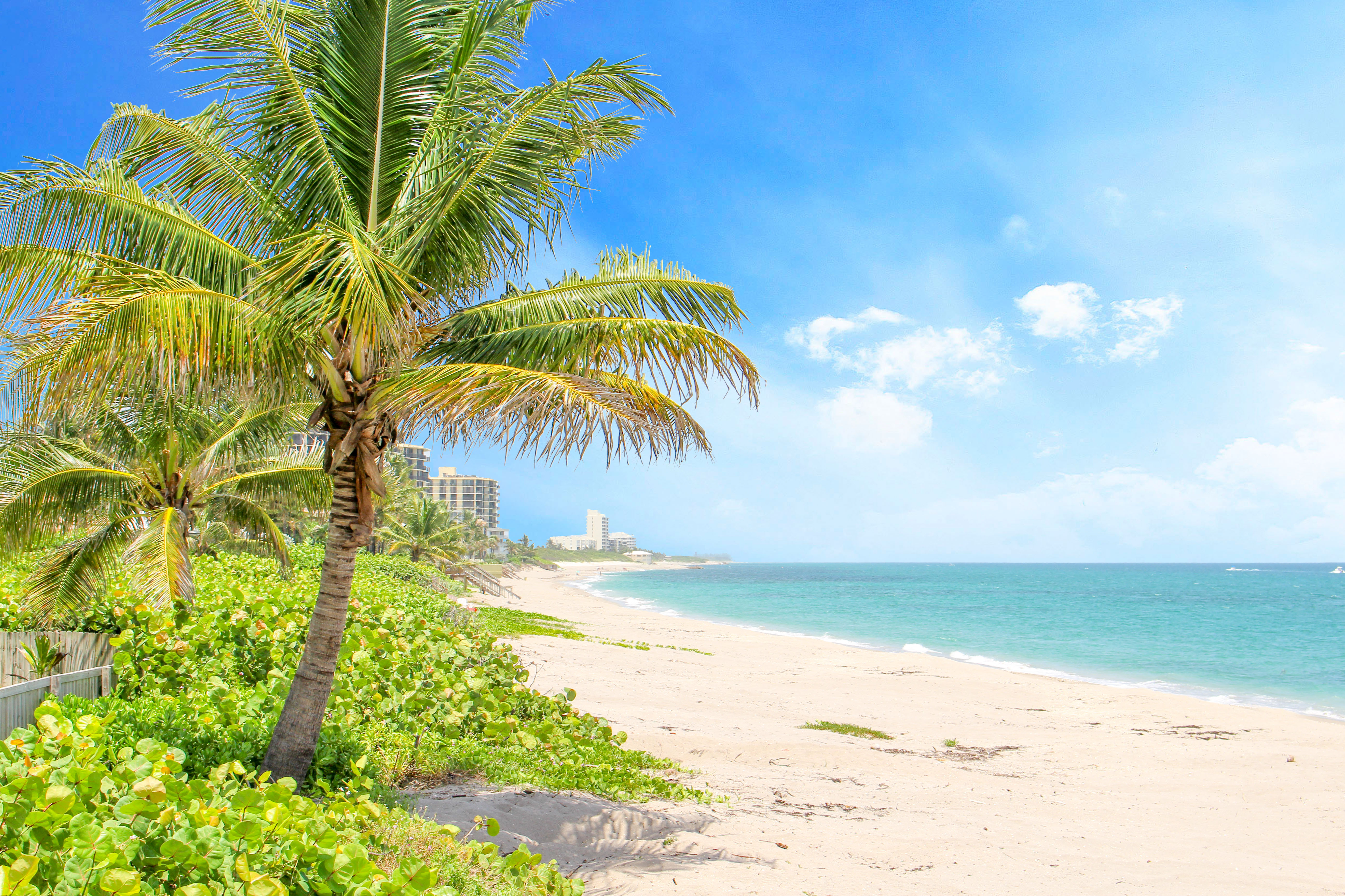 Fun Outdoor Ideas This Spring in Palm Beach County