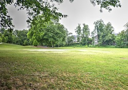 Tree-lined fields at Brookhaven Park at the corner of Peachtree Road and Osbourne.