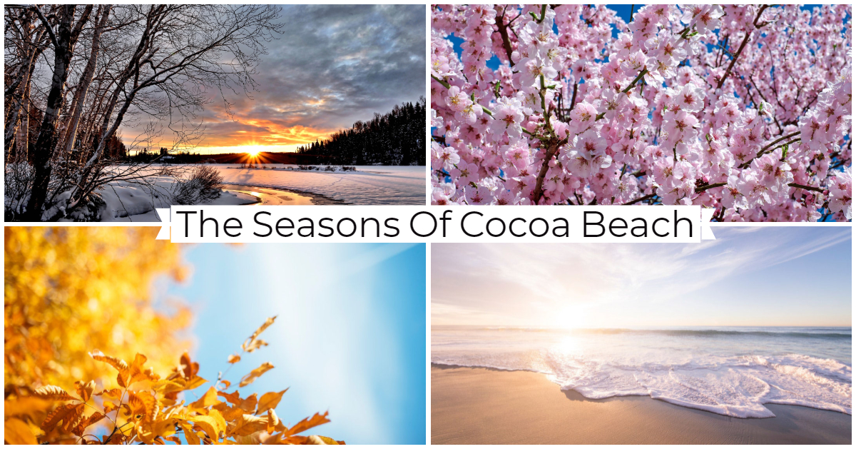 the seasons of Cocoa Beach