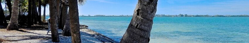 View From Bird Key
